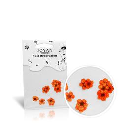 Suszone kwiatki w paczuszkach - różne kolory